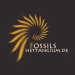 gravatar_fossils_hettangium