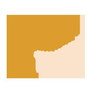 hettangian ammonites
