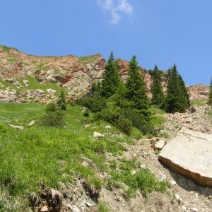 Ammonit - Karwendel-Exkursion am frühen Morgen (5)