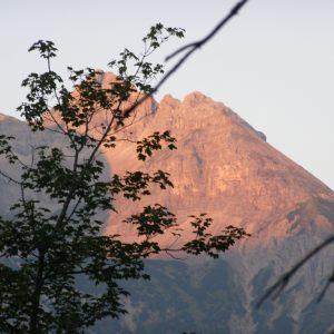 Ammonit - Karwendel-Exkursion am frühen Morgen (7)